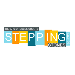 Team Page: Team Stepping Stones